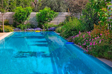 Swimming pool with flowers