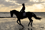 Silhouette of a Horse Rider Cantering on the Beach