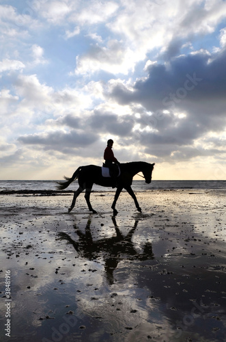 Silhouette of a Horse Rider Walking on Beach