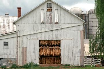Tabakscheune der Amish