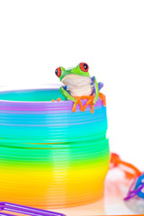 colorful frog on a bright toy