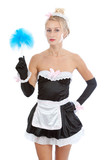 Young sexy maid with duster poster