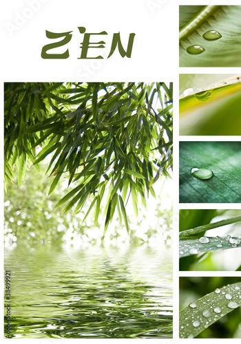 Papiers peints Bambou composition zen bambous