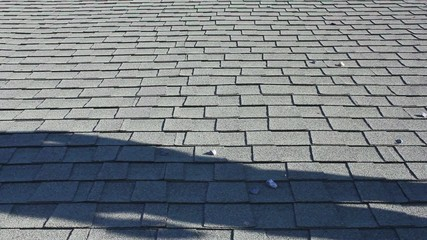 Quick Walk On Asphalt Roof