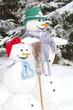 Schneemann - Witziges Wintermotiv