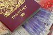 uk bio  passport money
