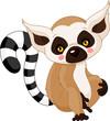 Fun zoo. Lemur