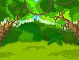 Tropical Forest Landscape