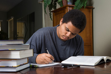 Hard working young black student