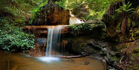 Silver Falls on Berry Creek Trail, Big Basin