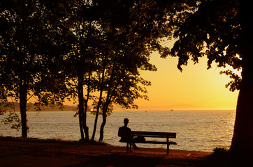 Man Sitting On Bench During A Beautiful Sunset