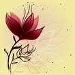 Flower sketch / Sweet floral background
