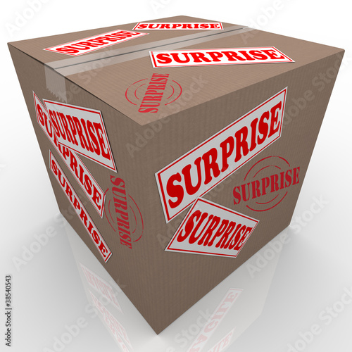 Surprise Box Shipped Cardboard Package