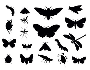 Insects silhouettes collections