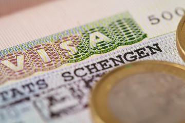 visa and coins