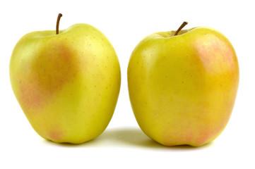 Golden delicious, apple typical of Trentino Alto Adige, Italy