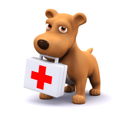 3d Dog carries a first aid kit for emegencies