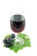 verre de vin rouge sur fond blanc