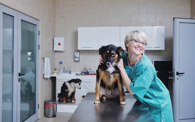 Female veterinary