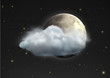 realistic moon with cloud floats in the night sky