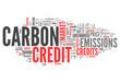 "Word Cloud ""Carbon Credit"""