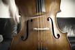 Contrabbassista che suona, movimento della musica