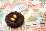 Wealthy Nest Egg poster