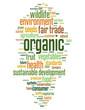 """ORGANIC"" Tag Cloud (fruit vegetables ecology healthy diet bio)"