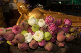 Many Lotus for offerings   Buddha in Buddhism . poster