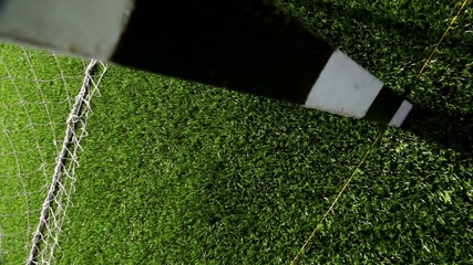 Green grass of soccer field, part of gate for soccer with net