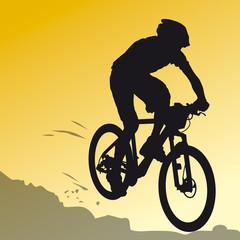 Sports - Vélo 7