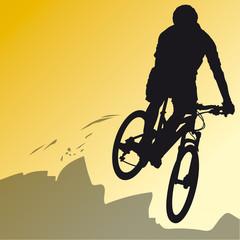 Sports - Vélo 6