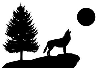 Heulender Wolf Silhouette Landschaft Tiere Wald