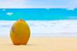 Coconut on a beautiful beach in Cuba