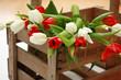 rote und weiße Tulpen