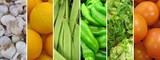 Horizontal mosaic of vegetables.