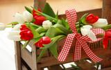 Fototapety Tulpen rot/weiß