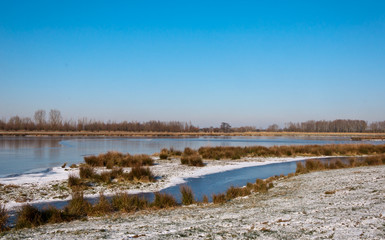 Small Dutch nature reserve in winter