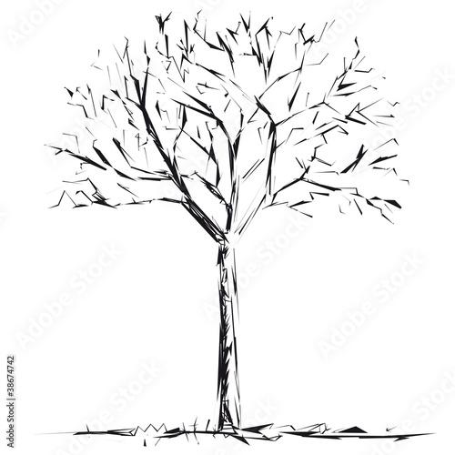 albero © robodread