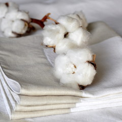 Nappe et serviettes cotton