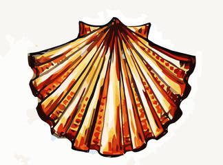 shell of saint james
