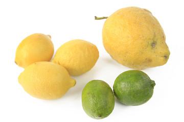 Zitronenarten