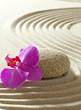 zen flower on sand