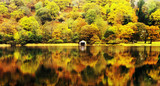 Fototapeta jezior - anglia - Inne