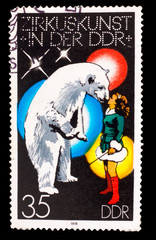 GERMANY - CIRCA 1978: A stamp printed in GERMANY, polar bear and