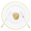 plate and euro coin