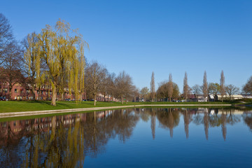 Pond in a city district in spring
