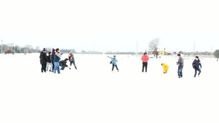 palle di neve