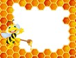 Bee cartoon with honey comb