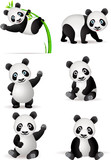 Fototapety Panda cartoon